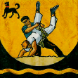 Toggenburger Schwingerverband